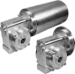 Stainless Worm Gear Motors